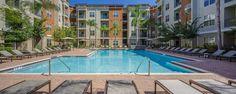 The Millennium Westshore apartments in Tampa, FL