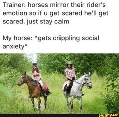 32 Of Todays Best Pics And Memes - Horses Funny - Funny Horse Meme - - 32 Of Todays Best Pics And Memes The post 32 Of Todays Best Pics And Memes appeared first on Gag Dad. Funny Horse Memes, Funny Horses, Funny Animals, Funny Memes, Horse Humor, Horse Puns, Otters Funny, Horse Facts, Equestrian Memes