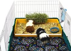 Midwest Diner - A Kitchen Insert for the Midwest Guinea Pig Cage