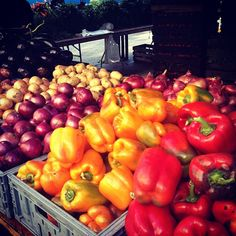 Red & yellow #peppers #onions #potatoes #eggplant #Manhattan #farmersmarketnyc - Union Square Greenmarket via rebeccabond on Instagram
