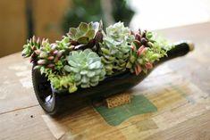 Succulent+Wine+Bottle+Planter