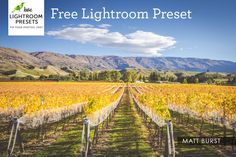 Free Lightroom Preset | Matte Burst – Love Lightroom Presets