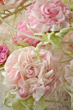 ribbon beauties