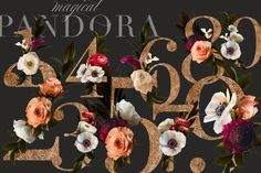 Lovely roses, anemones, strawflowers, ranunculus, and others were photographed to create this beautiful clip art set that really is magical. Rose Design, Dark Backgrounds, Paper Background, Overlays, Panda, Anemones, Ranunculus, How To Draw Hands, Floral Wreath
