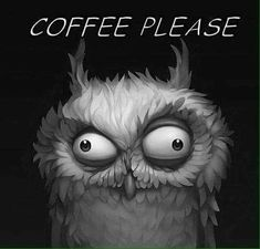 I Love Coffee, Coffee Art, Funny Owls, Owl Pictures, Owl Art, Coffee Quotes, Good Morning, Fantasy Art, Illustration Art
