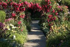 Image result for the secret garden garden