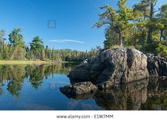 canadian rock in forest - Google Search