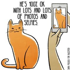 He's 100% OK with lots and lots of photos and selfies. #catlove