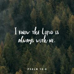 I have set the Lord always before me; because He is at my right hand I shall not be moved. Psalms 16:8 NKJV
