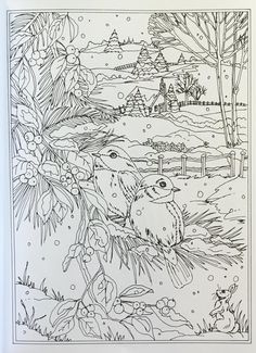 Snow Scene With Trees, Birds, Bunny, House, Fence. - Creative Haven Winter Wonderland Coloring Book (Adult Coloring) Teresa Goodridge: Books Coloring Pages Winter, Coloring Pages For Grown Ups, Christmas Coloring Pages, Coloring Book Pages, Doodle Coloring, Mandala Coloring, Colorful Drawings, Colorful Pictures, Christmas Colors