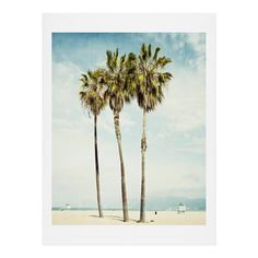 Bree Madden Venice Beach Palms Art Print | DENY Designs Home Accessories
