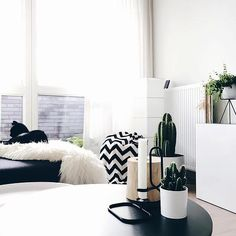 beautiful setting MadebyNicool #bfor #diamond #cacti #green #home