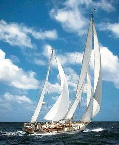 Who wouldn't love to go #sailing on this Antigua Classic Yacht Regatta? #doingsomethingamazingwithsailing www.sailchecker.com