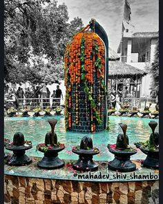 Shivpuri Dham, kota, Rajasthan. The #shivling is stated to be as high as 15 feet & is made from a single black stone. one can find as many as 525 shivlings.  #mahadev_shiv_shambo #shivpuridham #kota #rajasthan