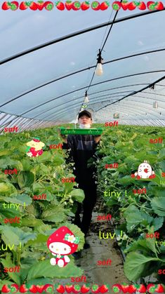 Cute Wallpaper Backgrounds, Pretty Wallpapers, Bts Wallpaper, Namjoon, Hoseok, Foto Bts, J Hope Smile, Jungkook Cute, Bts Aesthetic Pictures