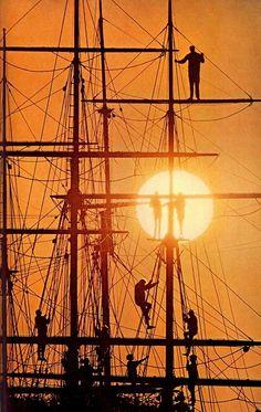 Yo Ho Yo Ho a pirates life for me...