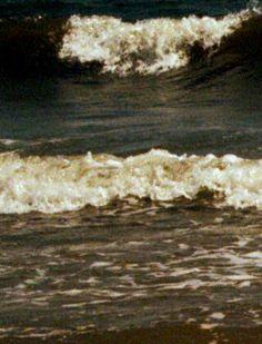 Gulfshores