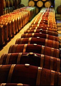 Barrels of Brunello di Montalcino
