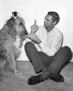 Cat, Dog, Cary Grant.  This picture is awesome. Cary Geant & a wolfie!!!