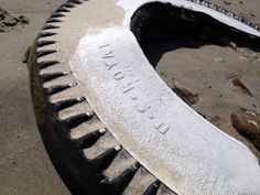 Spencer found this old whitewall at Dead Horse Beach in Brooklyn NY. An uncapped century landfill where cool bottles. leather soles and old tires appear Interesting Photos, Cool Photos, Old Tires, Brooklyn, 19th Century, Bottles, Horses, Beach, Leather