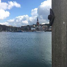 #Flensburg #maleinfachso by alexhoaxmaster