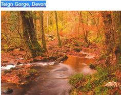 Route details miles 2 hours Moderate Teign Gorge walking route and map Dartmoor National Park, Walking Routes, Go Outdoors, Walks, Your Dog, National Parks, River, Map, Dogs