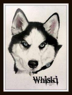 9x11 Siberian Husky
