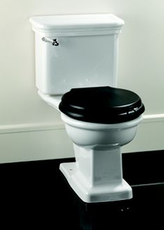 15 Best Black Toilet Seats Images