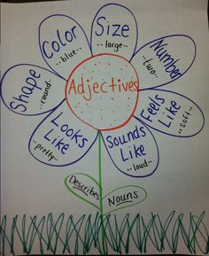 Ms. Winter's Campground : Anchor Charts