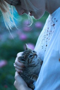 Kitten and owner gaze into each others eyes