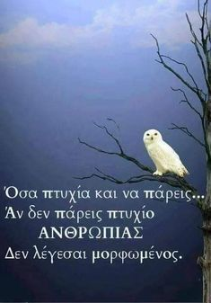 Motivational Quotes, Inspirational Quotes, Greek Quotes, True Words, Picture Video, Life Is Good, Psychology, Love Quotes, Personality