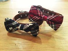 Nuevos #collares BOW TIE de cuero. Disponibles ya en tienda. En Avenida Condomina 42, Alicante.