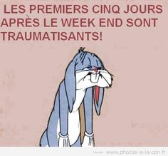Tout sauf le week end quoi Bugs Bunny, Morning Humor, Morning Quotes, Funny Images, Funny Photos, Gifs, Bon Weekend, Funny Socks, Go To Sleep