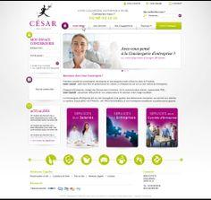 Maquette site cesar-conciergerie.com - ouvrer votre site internet avec Shop Application