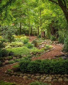 Dale Sievert's amazing shade garden in Wisconsin. Dale Sievert's amazing shade garden in Wisconsin. This image. Forest Garden, Woodland Garden, Garden Paths, Garden Beds, Garden In The Woods, Forest Path, Unique Garden, Natural Garden, The Secret Garden