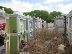 Curacao Cemetery | Flickr - Photo Sharing!