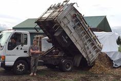 Chip Drop   Wood Chip Service