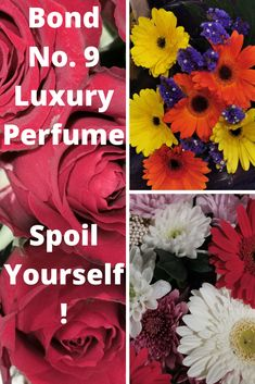 Bond No 9 Luxury Perfumes Spoil Yourself, Bond, Perfume, Luxury, Gifts, Presents, Favors, Fragrance, Gift