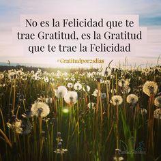 Día 1 de #gratitudpor21dias  Soy tan feliz y agradecida ahora que sostengo pensamientos de gratitud  Gracias! Gracias! Gracias   Puedes unirte en: http://ift.tt/2fRAo8D