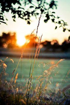 """""""Las madrugadas unen tanto que hacen que te atrevas a confesar deseos y sueños inconfesables. Más tarde llega el día, y con él... con él... A veces el arrepentimiento"""". Albert Espinosa - El mundo amarillo."""