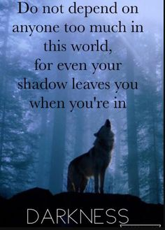 Wolf quotes and saying. The Wolf is a symbol of guardianship, instinct, loyalty, and spirit. The Wolf represents strong connection with instincts and intuition, high intelligence and communication – qualities we all should aspire to. Wisdom Quotes, True Quotes, Great Quotes, Motivational Quotes, Inspirational Quotes, Loner Quotes, Quotes Quotes, Funny Quotes, Wolf Qoutes