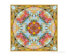 Mandala Coleur Royale De La Mer Gold Photographic Print by Alaya Gadeh at AllPosters.com