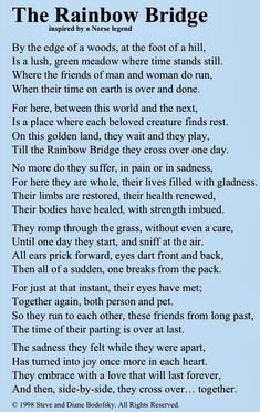 The Rainbow Bridge ~ Inspired by a Norse Legend. Made me cry to think of my fur babies that have already crossed the rainbow bridge. Rainbow Bridge Poem, Pet Poems, Der Boxer, Pet Loss Grief, Pekinese, Pet Remembrance, Losing A Pet, Losing A Dog Quotes, Pet Loss Quotes