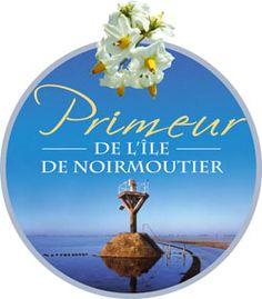 Primeur de l'Île de Noirmoutier Christmas Ornaments, Holiday Decor, Cooks Illustrated Recipes, Christmas Jewelry, Christmas Decorations, Christmas Decor