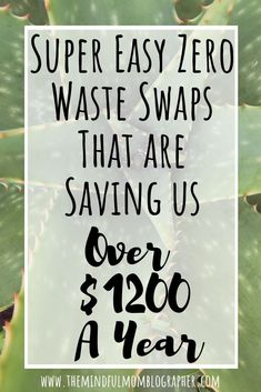Simple zero waste swaps to help reduce waste and save money.