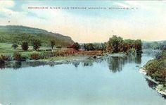 Vintage postcard: Schoharie Creek