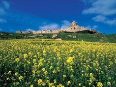Mdina is the old capital of Malta whose earliest inhabitants date back to 4000 BC. Mdina is approximately from Valletta. The fortifie. National Festival, Malta Gozo, Malta Island, Landscape Wallpaper, Beautiful Islands, What Is Like, Monument Valley, Tourism, Around The Worlds