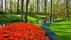 Benefits of Hiring a Professional Landscaping Company Unique Gardens, Beautiful Gardens, Beautiful Flowers, Travel Through Europe, Professional Landscaping, Tulip Fields, Voyage Europe, Bucket List Destinations, Landscaping Company