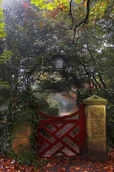 Red Gate, Blue Mountains, Australia photo via trina