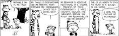Calvin & Hobbs